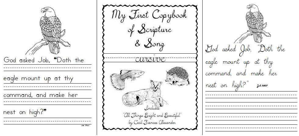 copybook_samples_2